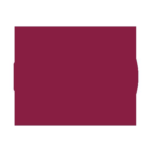 Axiom Pro – Marine Audiosteuerung | Raymarine by FLIR