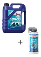 4T Motoröl 10W-30 + Multi Spray GRATIS